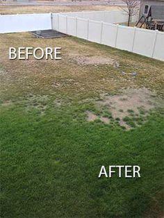Customer photo of before and after use of LazyMan Soil Doctor. Pergola Shade, Pergola Patio, Backyard Landscaping, Landscaping Ideas, Backyard Retreat, Front Garden Landscape, Garden Paths, Garden Steps, Herb Garden