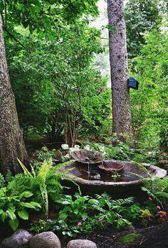 Vesiaihe pihalle vesipuutarha suihkulähde / Backyard water garden idea and la Ponds Backyard, Backyard Landscaping, Landscaping Ideas, Garden Ponds, Backyard Ideas, Backyard Shade, Modern Backyard, Patio Ideas, Pond Ideas