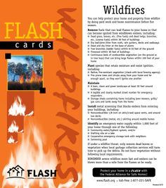Summer Safety, Can You Can, Wild Fire, Protecting Your Home, Grass, Pdf, Homes, Tips, Houses