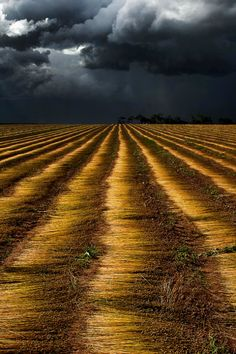 Moments Before the Rain, Normandie landscape, by Jan Gravekamp All Nature, Amazing Nature, Mother Earth, Mother Nature, Beautiful World, Beautiful Places, Landscape Photography, Nature Photography, Tornados