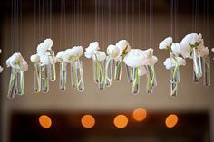 Clear tubes filled with dark purple ranunculus, wine anemones, and lavender spray roses will hang over the bar table.