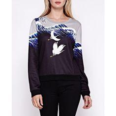 Regular Size Clothing for Women Pull, Size Clothing, Wetsuit, Graphic Sweatshirt, Sweatshirts, Swimwear, Sweaters, Clothes, Shopping