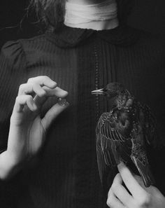character writing inspiration   fantasy magic power witchcraft coven witches   raven