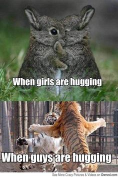 Animal humor. This one is funny and true