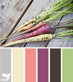 !Design Seeds palette - carrot tones!