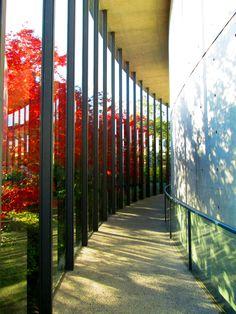 Shiba Ryotaro Memorial Museum - Library by Tadao Ando, Osaka, Japan