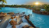 The sun peeks over trees, illuminating Bay Slides at Disney's Typhoon Lagoon water park Disney World Resorts, Walt Disney World, Disney World Attractions, Disney Blizzard Beach, Florida Resorts, Park, Water, Trees, Outdoor
