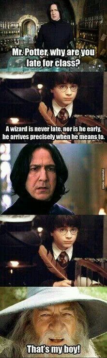 Why are you late Mr.Potter A wizard is never late he arrives when he is meant to