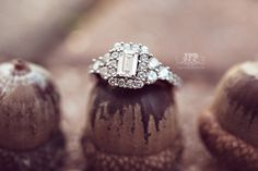 ring shots, acorns, wedding rings, engagement rings, macro photography, wedding photography