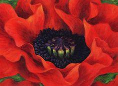 "Daily Paintworks - ""Big Red Poppy"" by Taya Barishev"