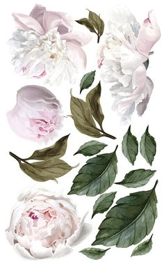 It used to be that wall decals or wall stickers, were sold primarily as an alternative to permanently Vinyl Wall Stickers, Wall Vinyl, Floral Wall, Textured Walls, Botanical Illustration, Botanical Prints, Watercolor Flowers, Wall Murals, Wall Art