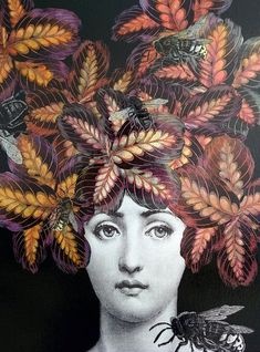 Fornasetti inspired original decoupage black by Lorypalomi on Etsy Fornasetti Wallpaper, Piero Fornasetti, Collages, Collage Art, Marsala, Magazine Collage, Opus, Paint Background, Printmaking