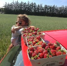 strawberry picking with friends Summer Dream, Summer Girls, Summer Fun, Summer Time, Summer Days, Strawberry Picking, Strawberry Summer, Fruit Picture, Summer Bucket Lists