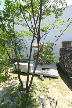 緑いっぱいの庭の中に建つ白い箱の家 – D'S STYLE(ディーズスタイル)