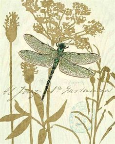 Dragonfly art I love.  No idea where I got it, I wish I could give credit.