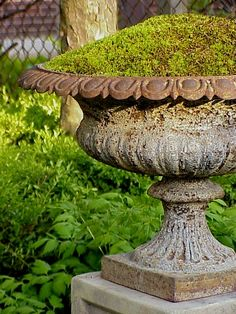 urn planted with moss- this is a great idea for shady areas and for winter