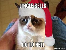 grumpy cat meme christmas jingle bell song - Yahoo Image Search Results - Tap the link now to see all of our cool cat collections! - Tap the link now to see all of our cool cat collections! Angry Cat Memes, Funny Grumpy Cat Memes, Funny Memes, Funny Videos, Christmas Cat Memes, Holiday Meme, Mean Cat, Lol, Jingle Bells