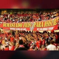 """""""Benfica o Campeão, nascido para vencer, por ti eu vou cantar em qualquer lugar e até morrer!!"""" 😈 #DiabosVermelhos #1982 #DemasiadoFiéisParaDesistir #CurvaNorte"""
