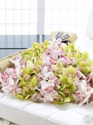 Send flowers with Flowers. Flower Delivery available in Dublin and nationwide. Send Flowers, All Flowers, Anniversary Flowers, Luxury Flowers, Cymbidium Orchids, Typography Art, Flower Delivery, Shades Of Green, Flower Designs