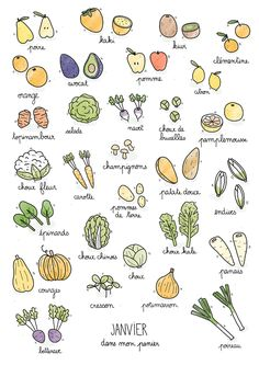 Fruits & Vegetables calendar on Behance Doodle Drawings, Easy Drawings, Sketch Note, Food Doodles, Bujo Doodles, Daily Pictures, Batch Cooking, Bullet Journal Inspiration, Food Illustrations