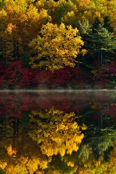 Autumn reflections.