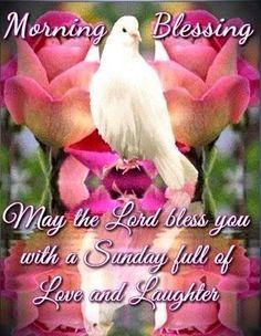 Sunday Morning Prayer, Good Morning Happy Sunday, Happy Sunday Quotes, Morning Thoughts, Morning Greetings Quotes, Morning Blessings, Good Morning Messages, Morning Prayers, Good Morning Wishes