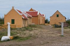 Renovated Houses at Knip, Curacao   Flickr - Photo Sharing!
