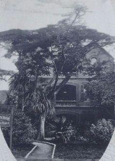 West Street – Durban – A Pictorial History – Graham Leslie McCallum Kwazulu Natal, African History, Historical Society, Beach Fun, South Africa, Surfing, Ocean, Street, City