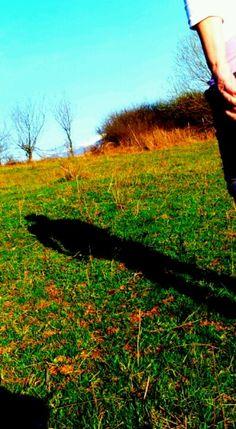 Grass Grass, My Arts, Grasses, Herb