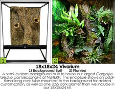 The best supplies for building custom backgrounds for bioactive terrariums and live vivariums. From the Custom Background Kit supplier in the USA! Guinea Pig Toys, Guinea Pig Care, Reptile Cage, Reptile Enclosure, Crested Gecko Vivarium, Cottage In The Woods, Exotic Fish, Reptiles And Amphibians, Horse Care