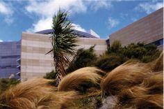 Landscaping Ideas New Zealand Garden Design Drought Tolerant 50 Ideas - Modern
