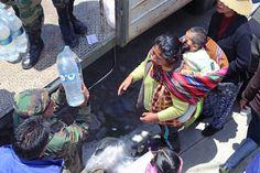 Racionamiento del agua en la ciudad de La Paz | Rimay Pampa