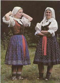 So that's how my great-grandma dressed before they immigrated to the US. Folk Costume, Costumes, Grandma Dress, Folk Print, Historical Costume, Printed Skirts, Beautiful Patterns, Traditional Dresses, Czech Republic