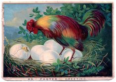 Vintage Easter Image - Chicken with Eggs - The Graphics Fairy