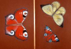 Fluturele - pastel Moth, Insects, Pastel, Blog, Animals, Cake, Animales, Animaux, Blogging