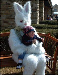 Freaky Easter Bunny so creepy Scary Photos, Creepy Images, Creepy Pictures, Funny Photos, Funny Bunnies, Cute Bunny, Bunny Pics, Real Easter Bunny, Easter Bunny Pictures Real