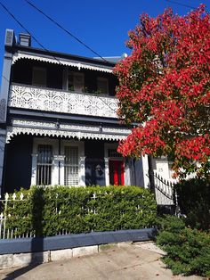 Paddington terrace in autumn | Sydney's Eastern Suburbs