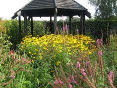 Meriments Garden