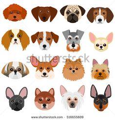 Small Dog Faces Set On White Background Stock Vector Illustration 516655609 : Shutterstock