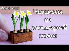 Daffodils from polymer clay🌿Tutorial. Dollhouse Tutorials, Diy Dollhouse, Craft Projects, Projects To Try, Miniature Plants, Polymer Clay Miniatures, Polymer Clay Flowers, Clay Tutorials, Trees To Plant