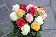 LesFleurs.ch (@lesfleursch) | Twitter Creations, Twitter, Rose, Flowers, Plants, Florists, Planting Flowers, Bouquet Of Flowers, Pink