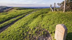 Looking back towards Corfe Castle from the Purbeck Ridgeway © National Trust/Will Wilkinson