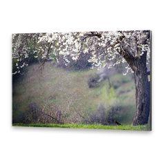 Tablou simplu după o fotografie de Attila Szabó Photoshop, Painting, Art, Carnival, Attila, Art Background, Painting Art, Kunst, Paintings