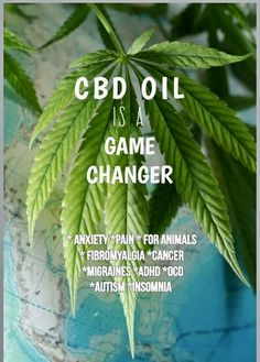 Get your CBD from a source you can trust, Hempworx & me Gina Griffith. We provide the purest CBD on the market and carry the Goverment's Hemp Seal of Approval for quality & standards. CBD Game Changer has you covered! Fibromyalgia, Chronic Pain, Chronic Illness, Ocd And Autism, Tension Headache, Migraine Relief, Cbd Hemp Oil, Drug Test, Game Changer