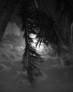 Full moon on the beach, Caye Caulker