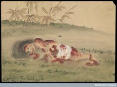 Kusozu: the death of a noble lady and the decay of her body, panel 5 of 9. The body of the nobleman has entered an advance state of decay that shows purge fluid escaping the mouth, the abdominal cavity has burst open, and maybe signed of skin slippage.