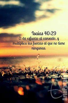 """""""Acuérdate de lo que hizo Amalec contigo en el camino, cuando salías de Egipto; de cómo te salió al encuentro en el camino, y te desbarató la retaguardia de todos los débiles que iban detrás de ti, cuando tú estabas cansado y trabajado; y no tuvo ningún temor de Dios. Por tanto, cuando Jehová tu Dios te dé descanso de todos tus enemigos alrededor, en la tierra que Jehová tu Dios te da por heredad para que la poseas, borrarás la memoria de Amalec de debajo del cielo; no lo olvides. Venid a mí…"""