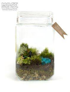 For My Father // Moss Wars — Moss Love Terrariums #fathersday #starwars #lukeskywalker #darthvader