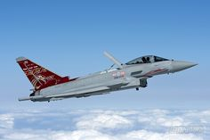 E keijzerIronbirdRED - Royal Air Force Typhoon Display Team.Jonny with airbrake up.