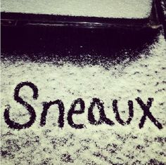Whether is snows or not (like it did 1-24-14 & 1-28-14), we celebrate Sneaux Day every December at UL Lafayette!